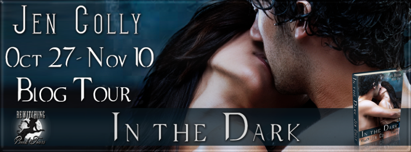 In the Dark Banner 851 x 315