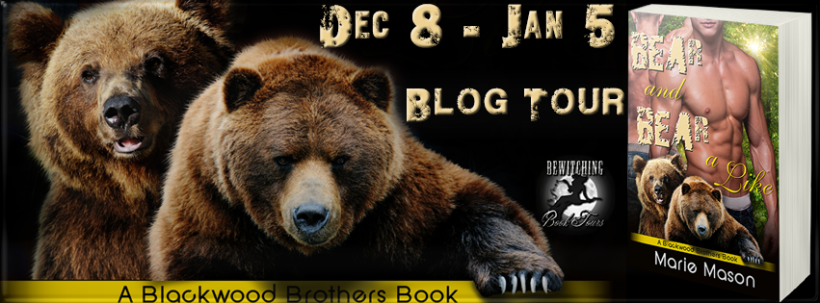 Bear and Bear A Like Banner 851 x 315