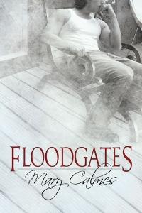 FloodgatesLG